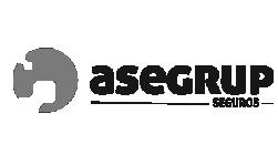Aseguradora Asegrup