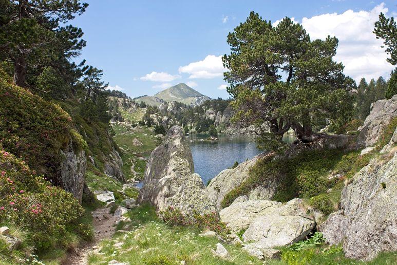 Ruta mountainbike Barcelona, Montnegre